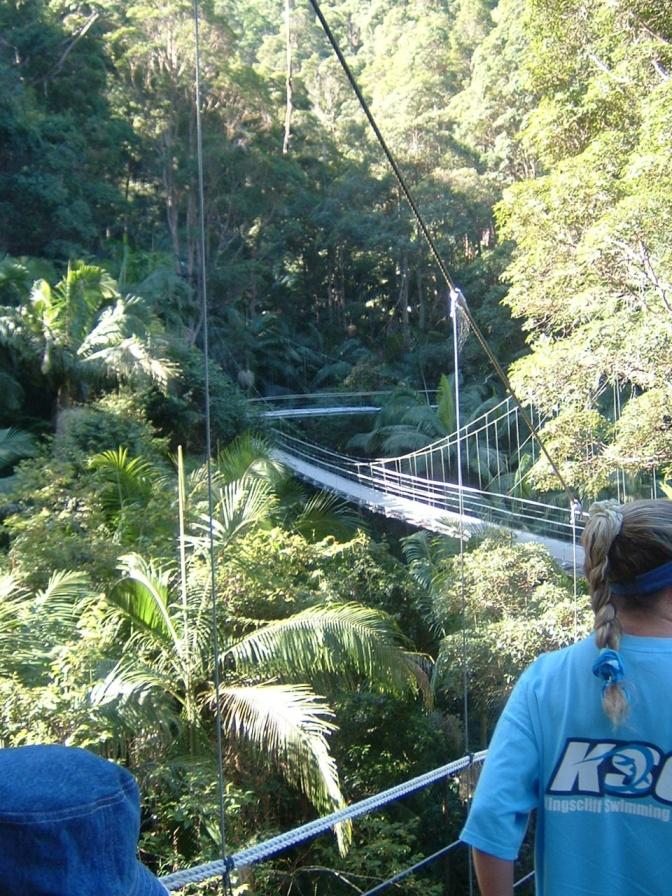 Dschungel Camp 2021